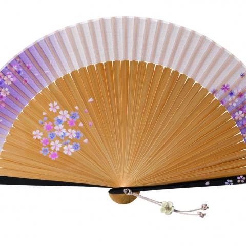 扇子 桜かすみ【パープル】扇袋セット 1365S